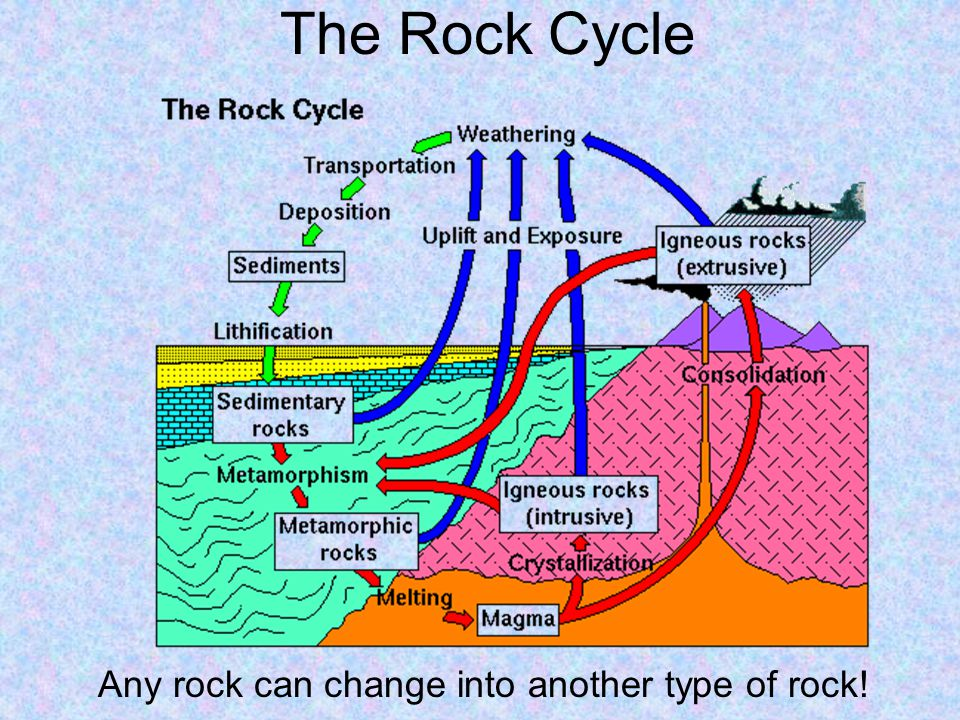 The Rock Cycle Any rock can change into another type of rock!