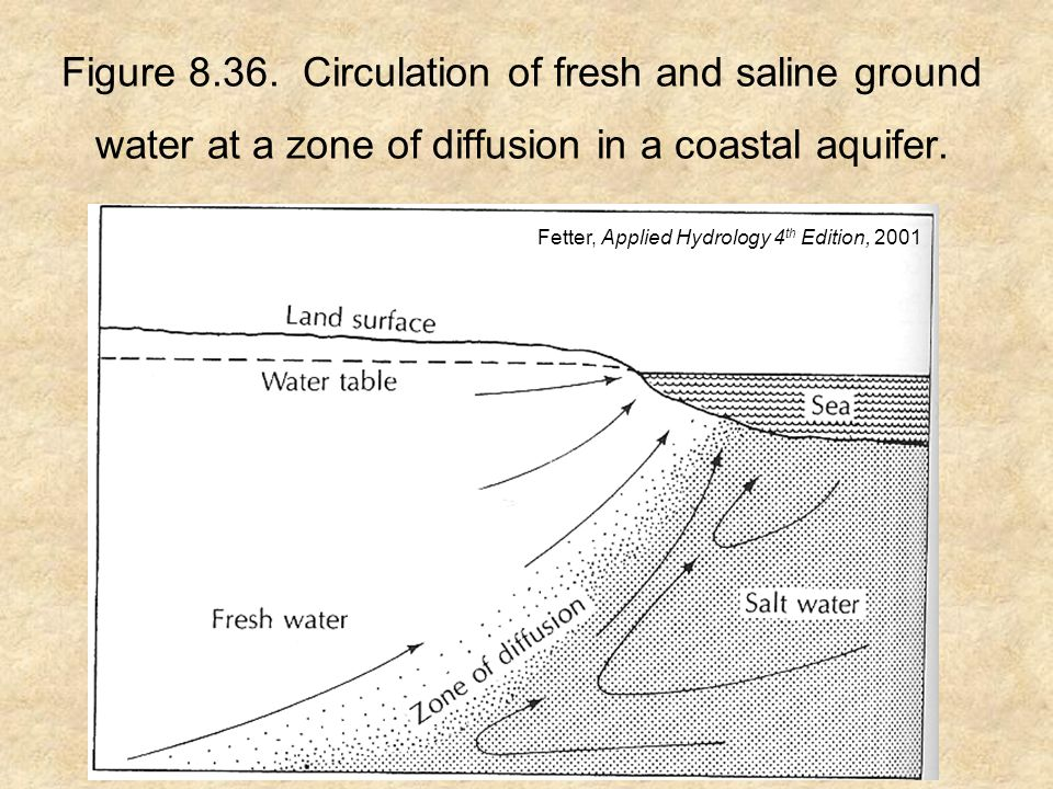 Figure 8.36. Circulation of fresh and saline ground water at a zone of diffusion in a coastal aquifer. Fetter, Applied Hydrology 4 th Edition, 2001