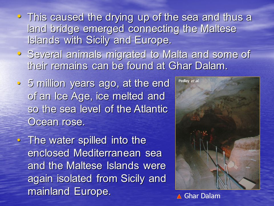 This caused the drying up of the sea and thus a land bridge emerged connecting the Maltese Islands with Sicily and Europe. This caused the drying up o