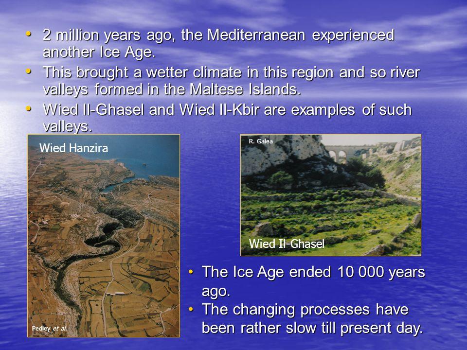 The Rocks of the Maltese Islands All the Maltese rocks are sedimentary.