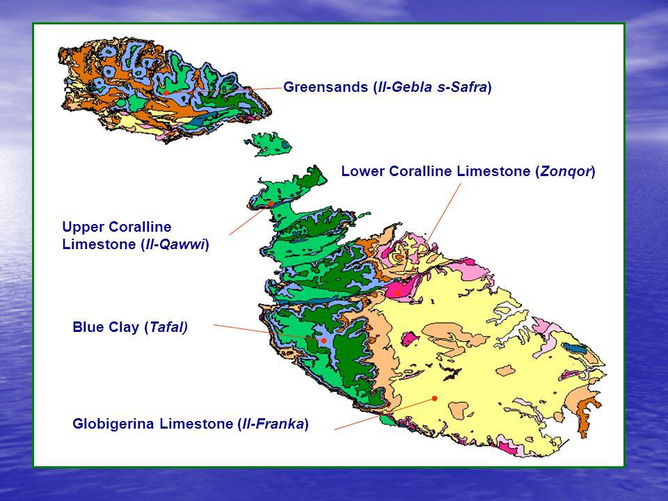 Upper Coralline Limestone Plateau Greensands Blue Clay Globigerina Limestone Lower Coralline Limestone Qammieh, Malta S.