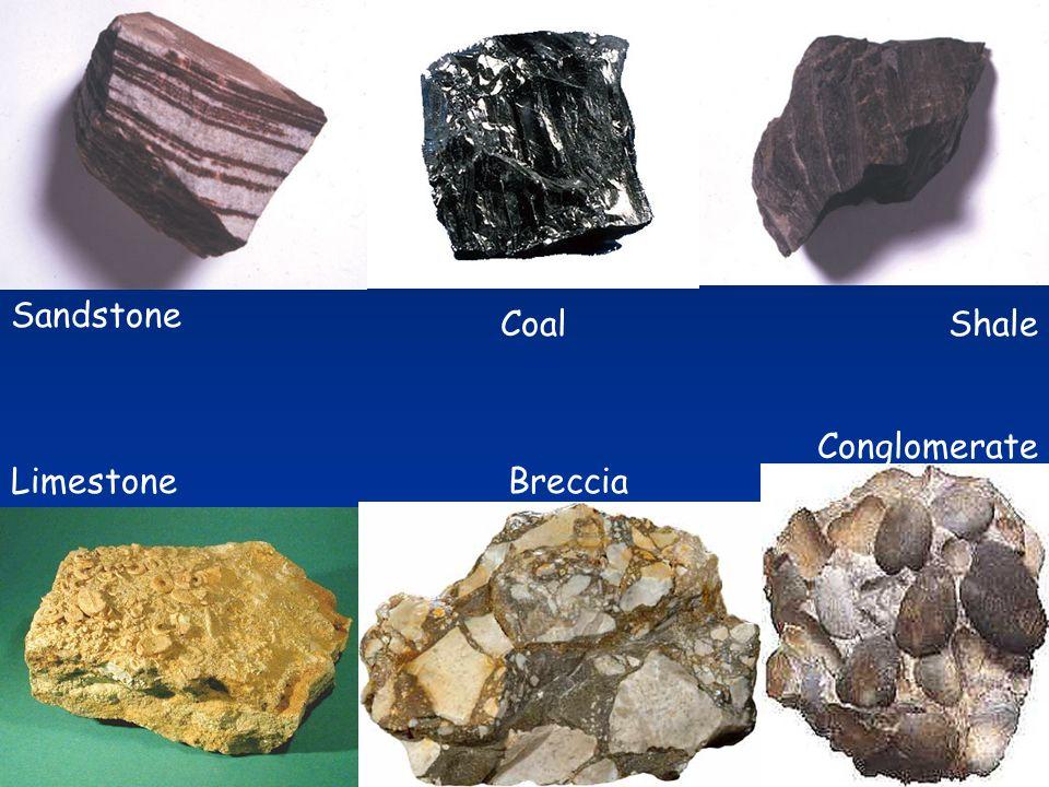 Limestone Sandstone Breccia Conglomerate ShaleCoal