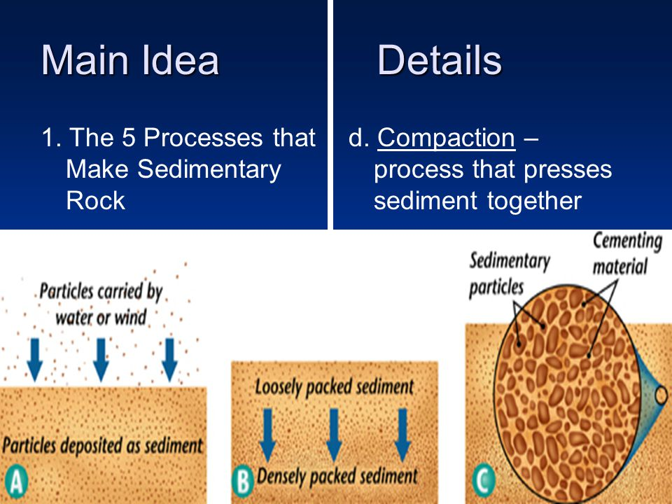 Main IdeaDetails 1.The 5 Processes that Make Sedimentary Rock e.