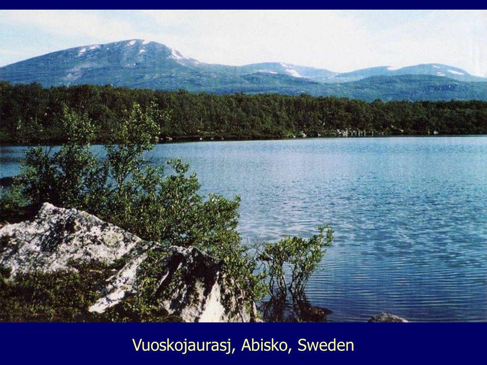Vuoskojaurasj, Abisko, Sweden