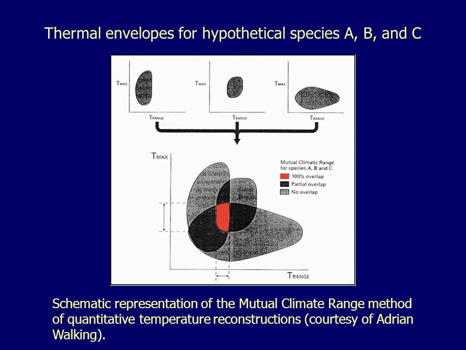 Thermal envelopes for hypothetical species A, B, and C Schematic representation of the Mutual Climate Range method of quantitative temperature reconstructions (courtesy of Adrian Walking).
