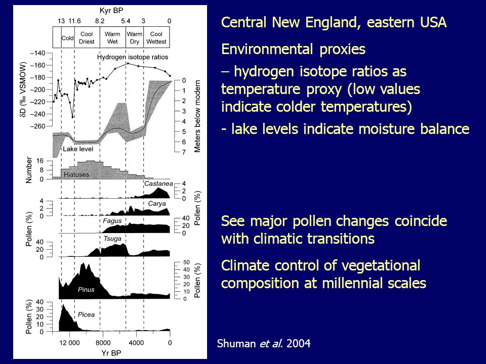 Central New England, eastern USA Environmental proxies – hydrogen isotope ratios as temperature proxy (low values indicate colder temperatures) - lake levels indicate moisture balance See major pollen changes coincide with climatic transitions Climate control of vegetational composition at millennial scales Shuman et al.