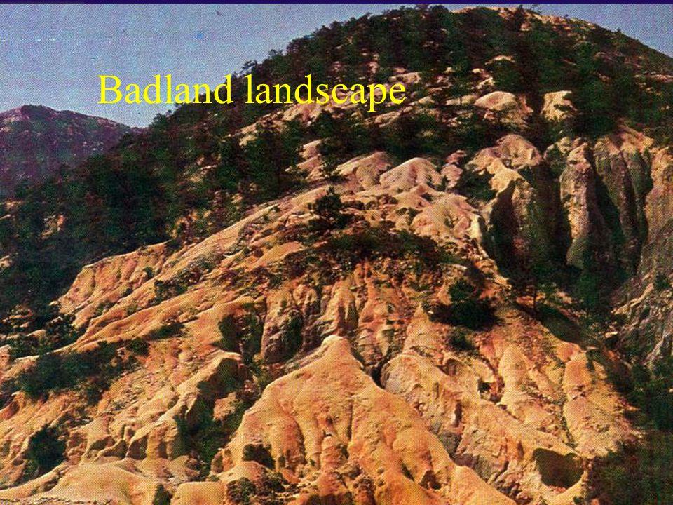 Badland landscape