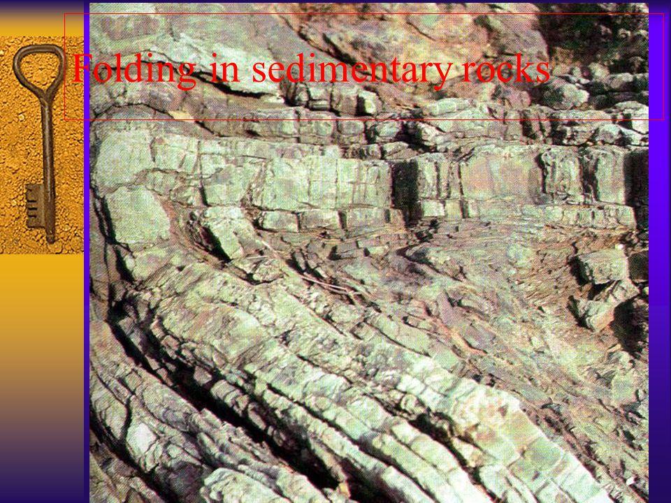 Folding in sedimentary rocks