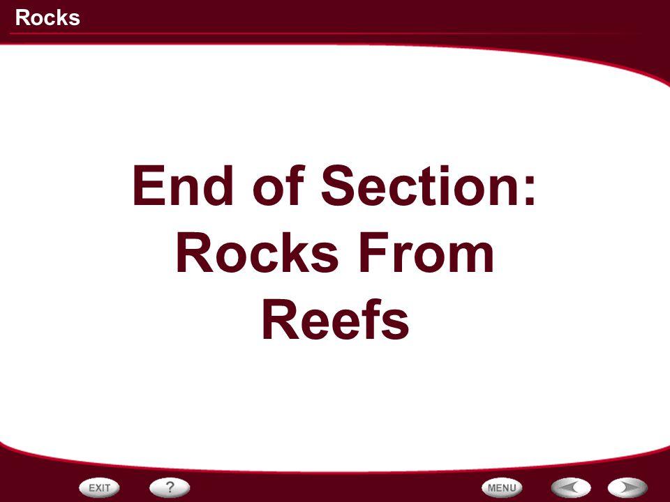 Rocks End of Section: Rocks From Reefs
