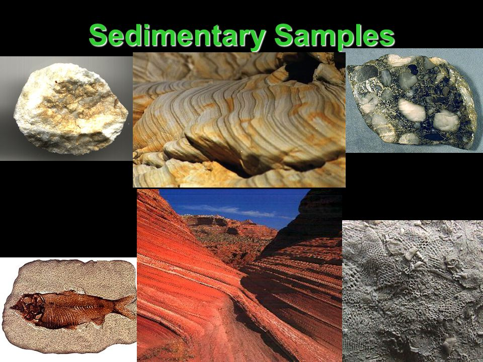 Sedimentary Samples