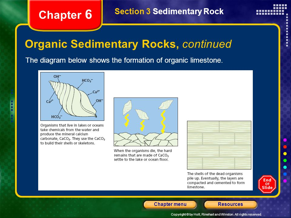 Copyright © by Holt, Rinehart and Winston. All rights reserved. ResourcesChapter menu Section 3 Sedimentary Rock Chapter 6 Organic Sedimentary Rocks,