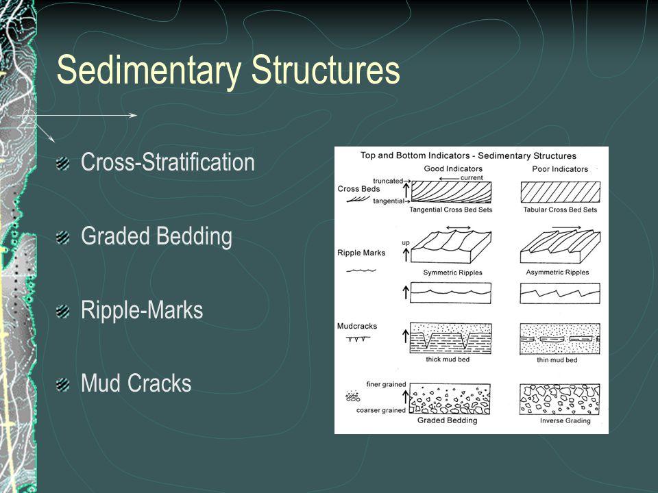 Sedimentary Structures Cross-Stratification Graded Bedding Ripple-Marks Mud Cracks
