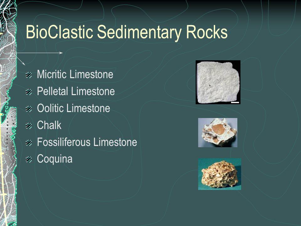 BioClastic Sedimentary Rocks Micritic Limestone Pelletal Limestone Oolitic Limestone Chalk Fossiliferous Limestone Coquina