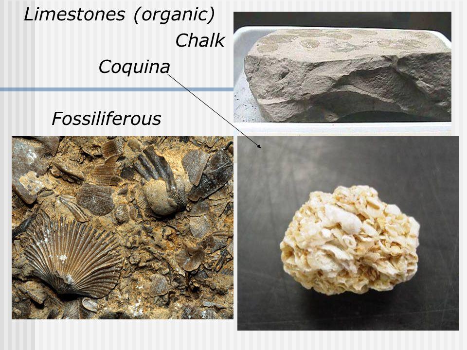 Limestones (organic) Chalk Coquina Fossiliferous