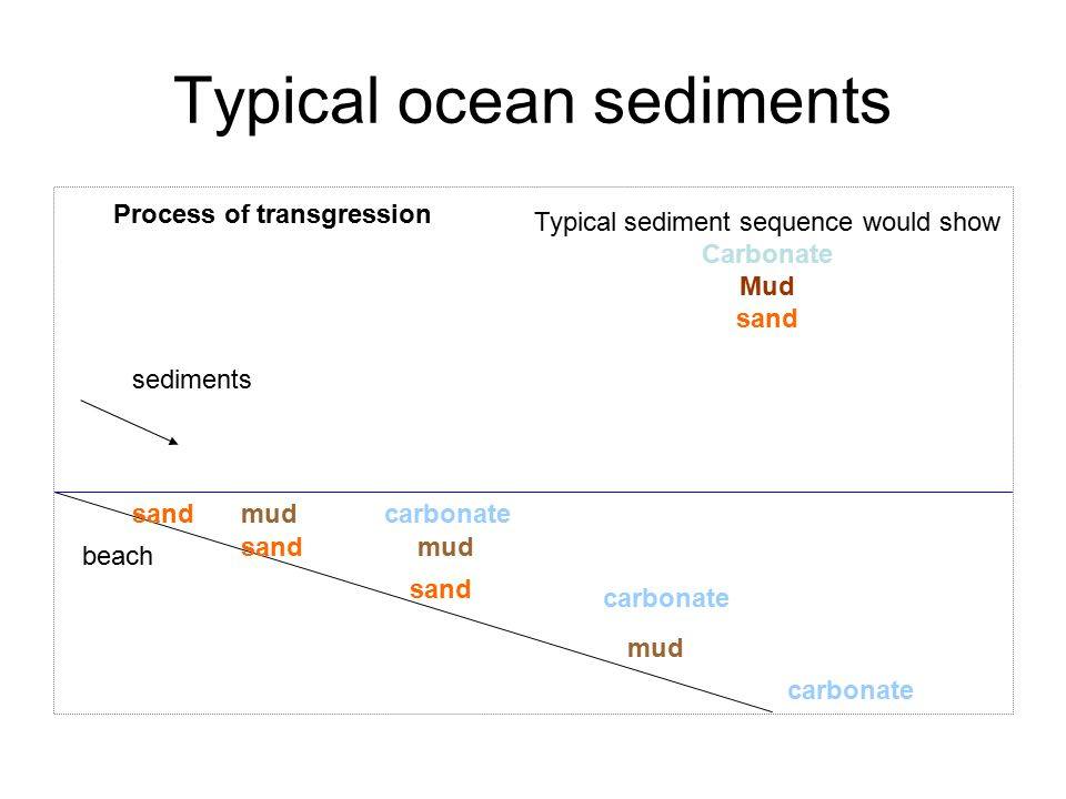 Typical ocean sediments beach sand mud carbonate sediments Process of transgression sandmud carbonate sandmudcarbonate Typical sediment sequence would show Carbonate Mud sand