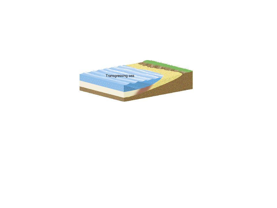 Typical ocean sediments beach sand mud carbonate sediments sandmud Dissolved ions