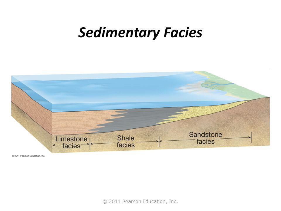 © 2011 Pearson Education, Inc. Sedimentary Facies