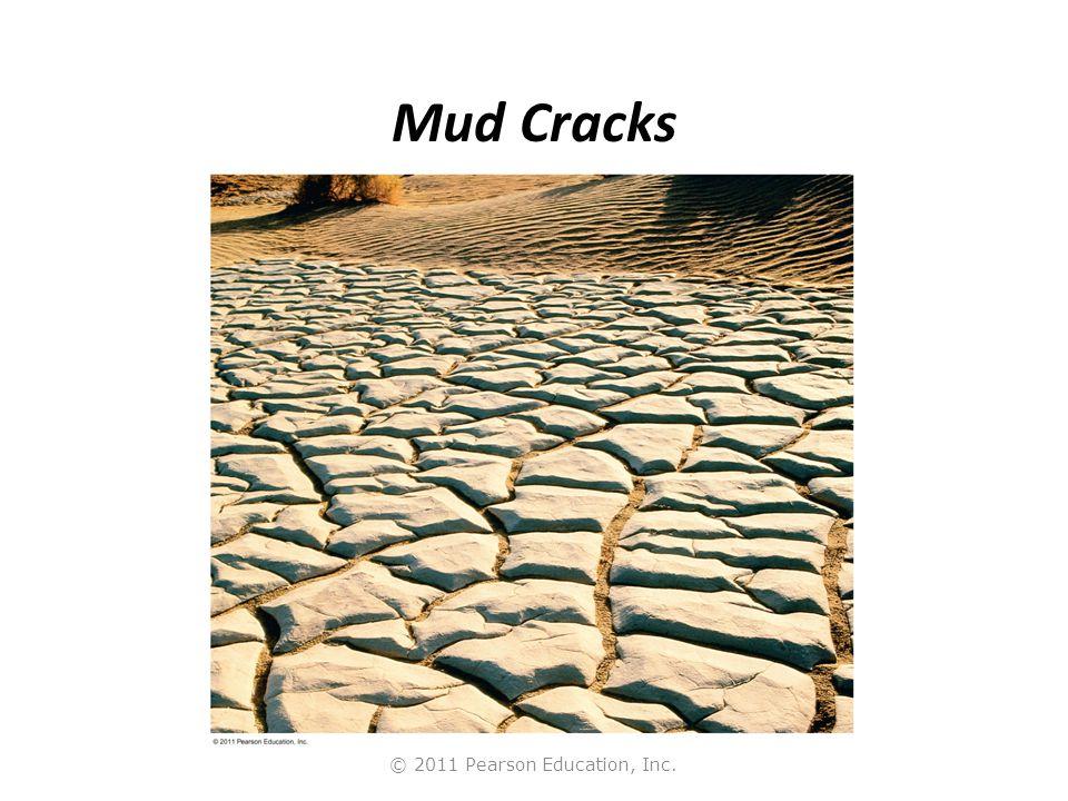 © 2011 Pearson Education, Inc. Mud Cracks