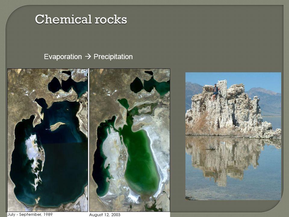 Chemical rocks Evaporation  Precipitation