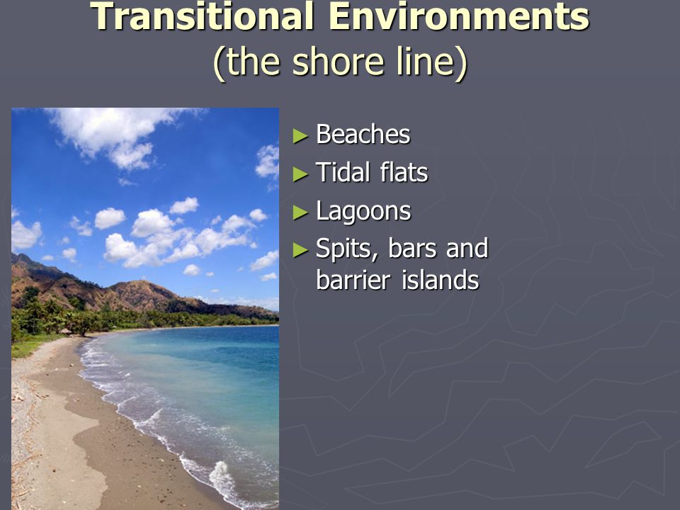 Transitional Environments (the shore line) ► Beaches ► Tidal flats ► Lagoons ► Spits, bars and barrier islands