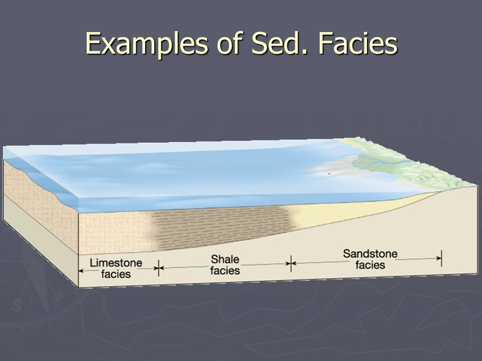 ► Some beds show an upward gradual decrease in grain size, known as graded bedding Graded Bedding ► Graded bedding is common in turbidity current deposits  form when sediment- water mixtures flow along the seafloor  As they slow, the largest particles settle out then smaller ones