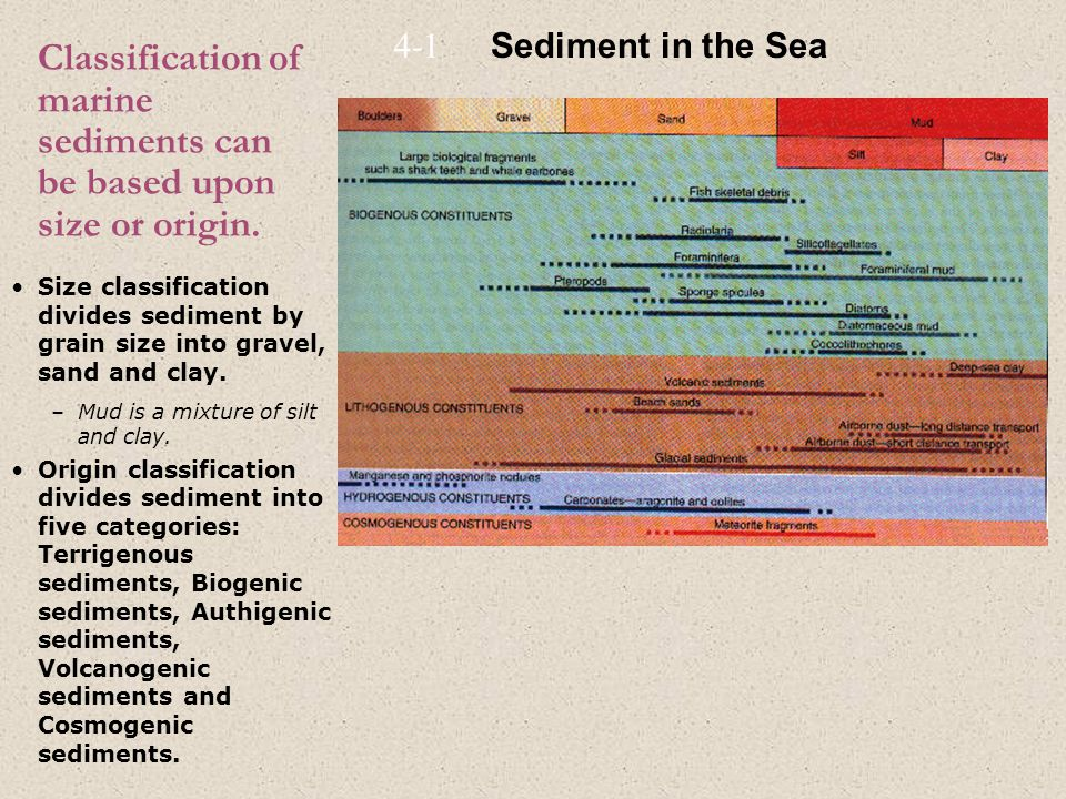 Classification of marine sediments can be based upon size or origin.