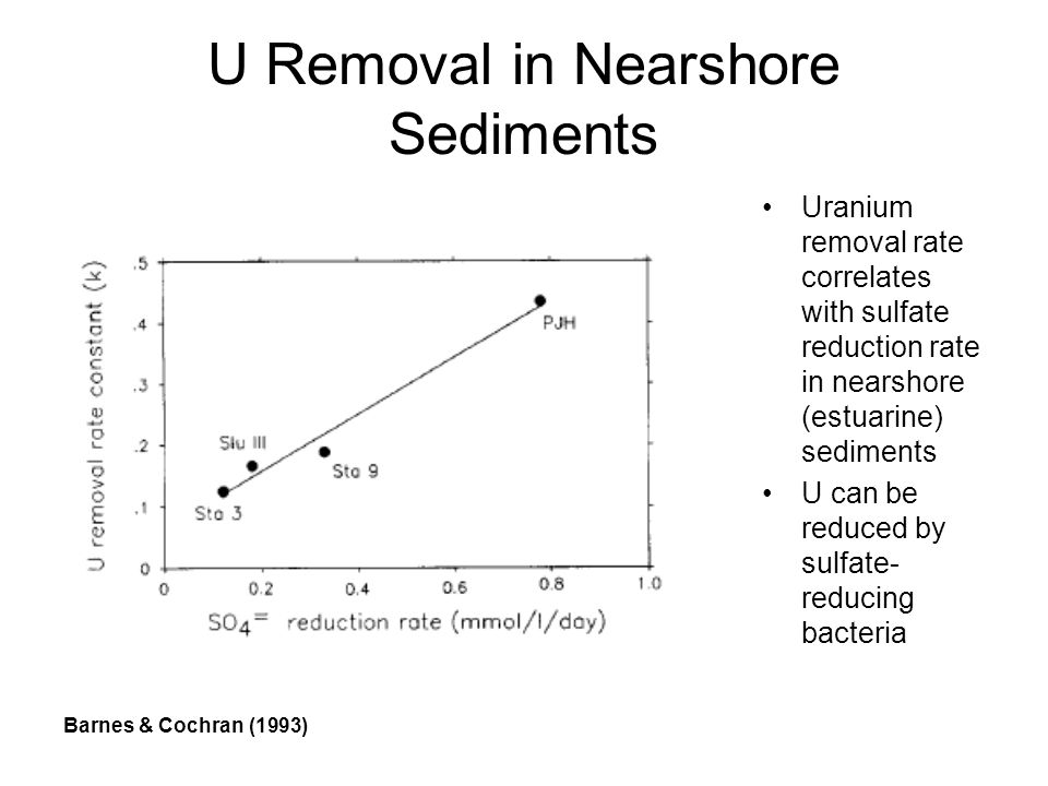 U Removal in Nearshore Sediments Uranium removal rate correlates with sulfate reduction rate in nearshore (estuarine) sediments U can be reduced by sulfate- reducing bacteria Barnes & Cochran (1993)