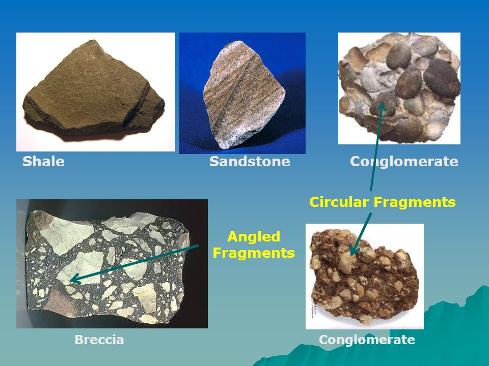 Shale Sandstone Conglomerate BrecciaConglomerate Angled Fragments Circular Fragments