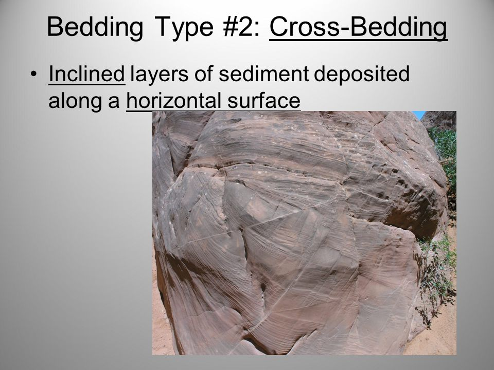 Bedding Type #2: Cross-Bedding Inclined layers of sediment deposited along a horizontal surface