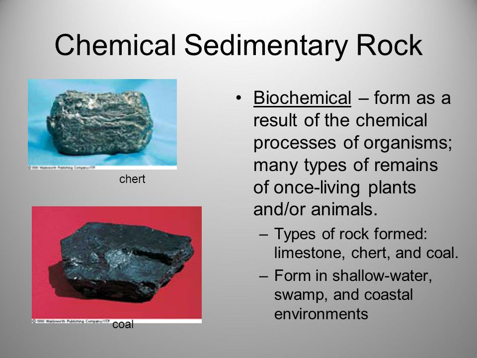 Chemical Sedimentary Rock Biochemical – form as a result of the chemical processes of organisms; many types of remains of once-living plants and/or animals.