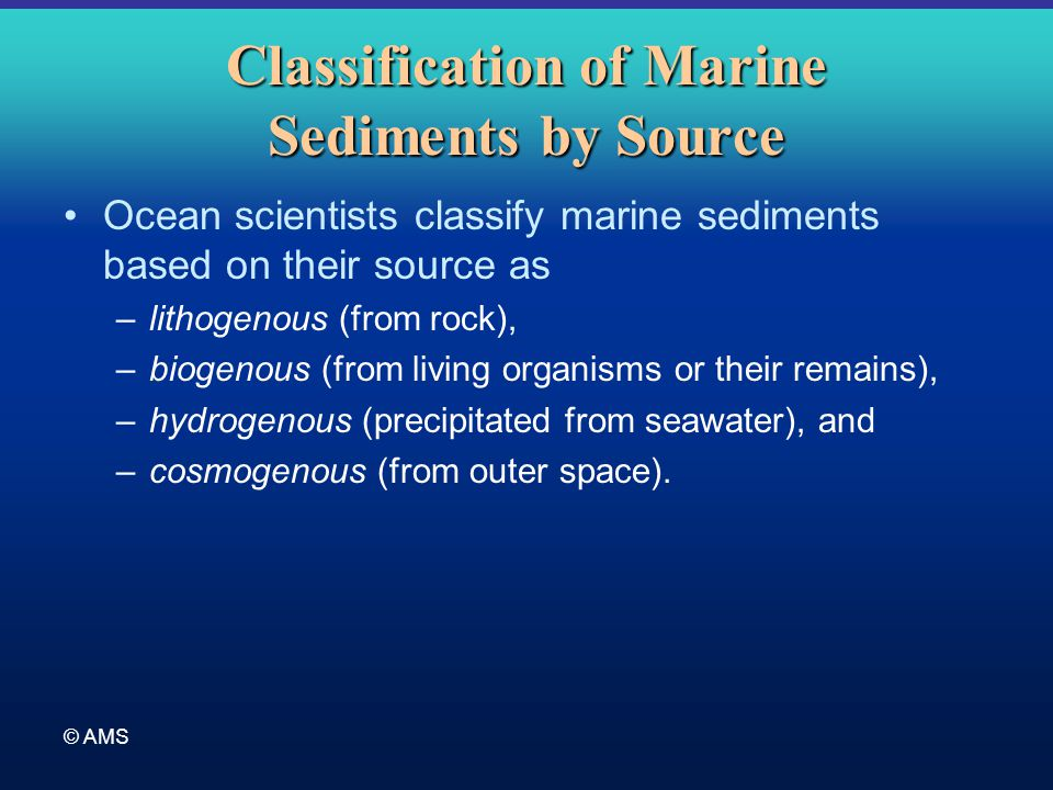 © AMS Classification of Marine Sediments by Source Ocean scientists classify marine sediments based on their source as –lithogenous (from rock), –biog
