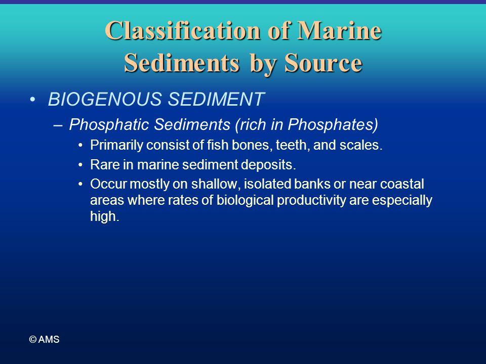 © AMS Classification of Marine Sediments by Source BIOGENOUS SEDIMENT –Phosphatic Sediments (rich in Phosphates) Primarily consist of fish bones, teet