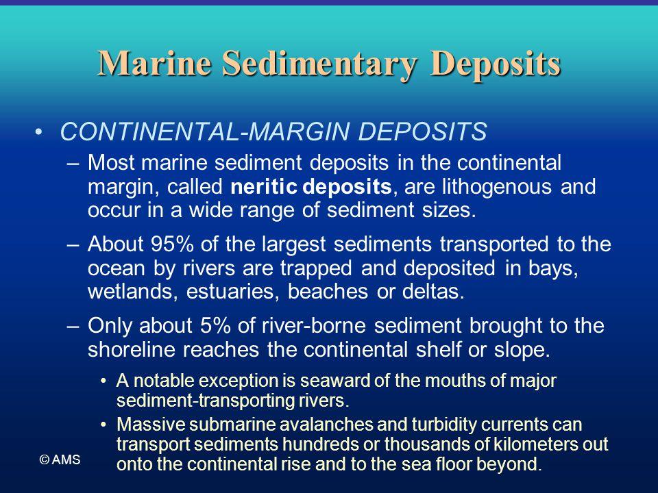 © AMS Marine Sedimentary Deposits CONTINENTAL-MARGIN DEPOSITS –Most marine sediment deposits in the continental margin, called neritic deposits, are l