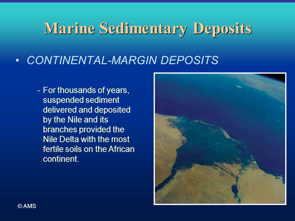 © AMS Marine Sedimentary Deposits CONTINENTAL-MARGIN DEPOSITS -For thousands of years, suspended sediment delivered and deposited by the Nile and its