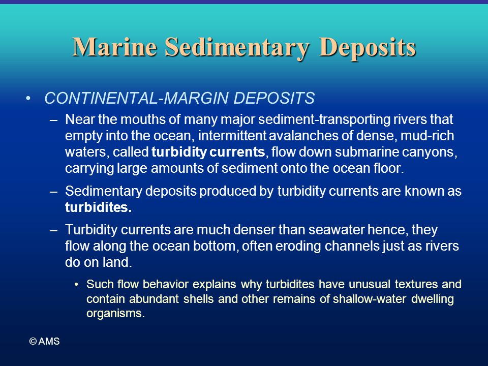 © AMS Marine Sedimentary Deposits CONTINENTAL-MARGIN DEPOSITS –Near the mouths of many major sediment-transporting rivers that empty into the ocean, i