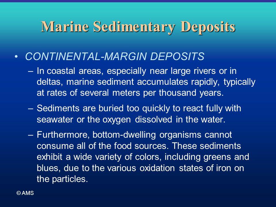 © AMS Marine Sedimentary Deposits CONTINENTAL-MARGIN DEPOSITS –In coastal areas, especially near large rivers or in deltas, marine sediment accumulate
