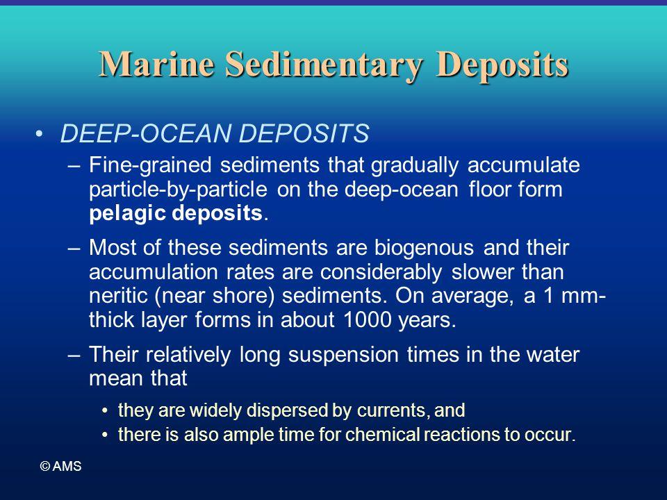 © AMS Marine Sedimentary Deposits DEEP-OCEAN DEPOSITS –Fine-grained sediments that gradually accumulate particle-by-particle on the deep-ocean floor f