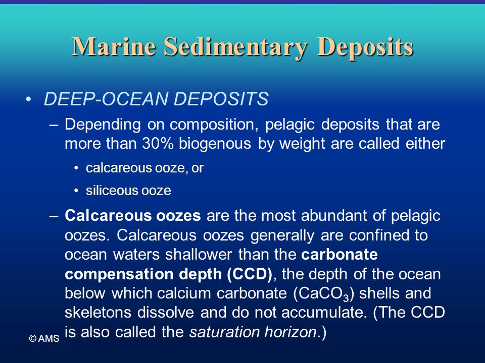 © AMS Marine Sedimentary Deposits DEEP-OCEAN DEPOSITS –Depending on composition, pelagic deposits that are more than 30% biogenous by weight are calle