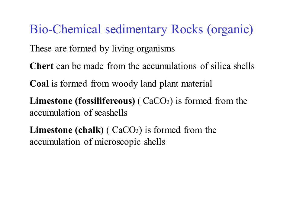 Rock salt Rock gypsum Chert Coal Chemical Sedimentary Rocks