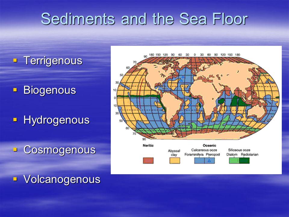 Sediments and the Sea Floor  Terrigenous  Biogenous  Hydrogenous  Cosmogenous  Volcanogenous