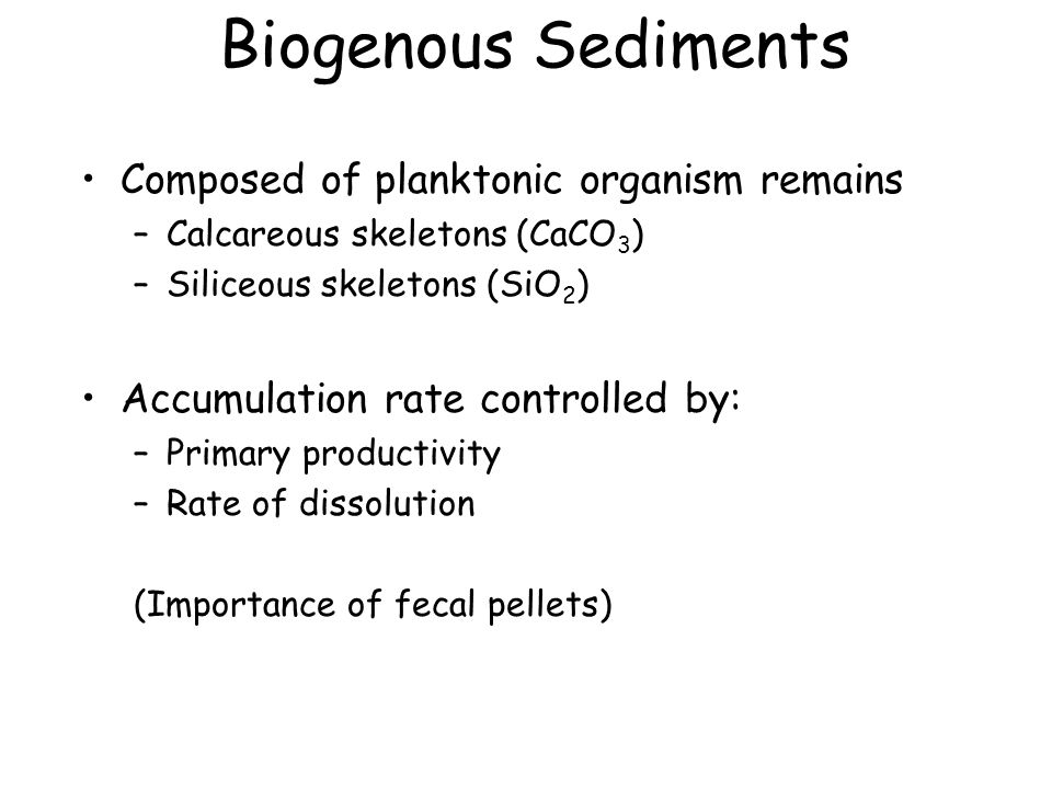 Biogenous Sediments Composed of planktonic organism remains –Calcareous skeletons (CaCO 3 ) –Siliceous skeletons (SiO 2 ) Accumulation rate controlled by: –Primary productivity –Rate of dissolution (Importance of fecal pellets)