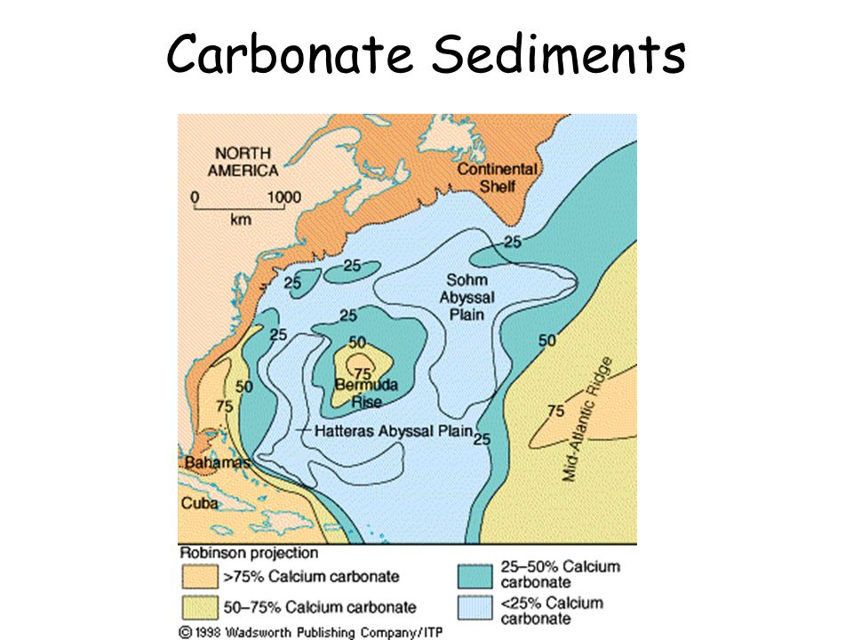Carbonate Sediments