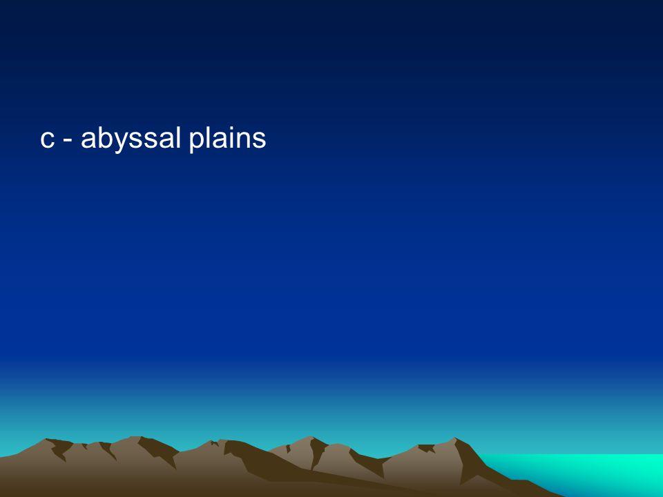 c - abyssal plains