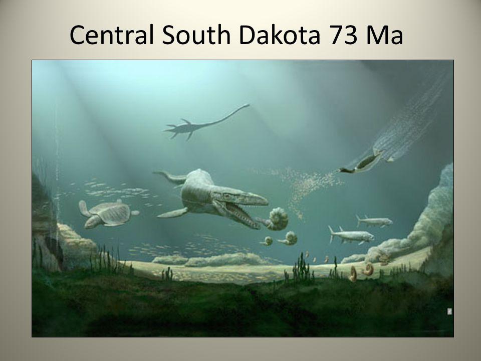 Central South Dakota 73 Ma