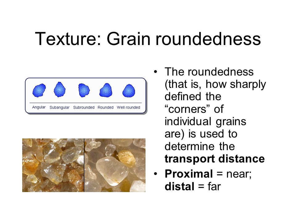 Texture: Grain roundedness The roundedness (that is, how sharply defined the corners of individual grains are) is used to determine the transport distance Proximal = near; distal = far