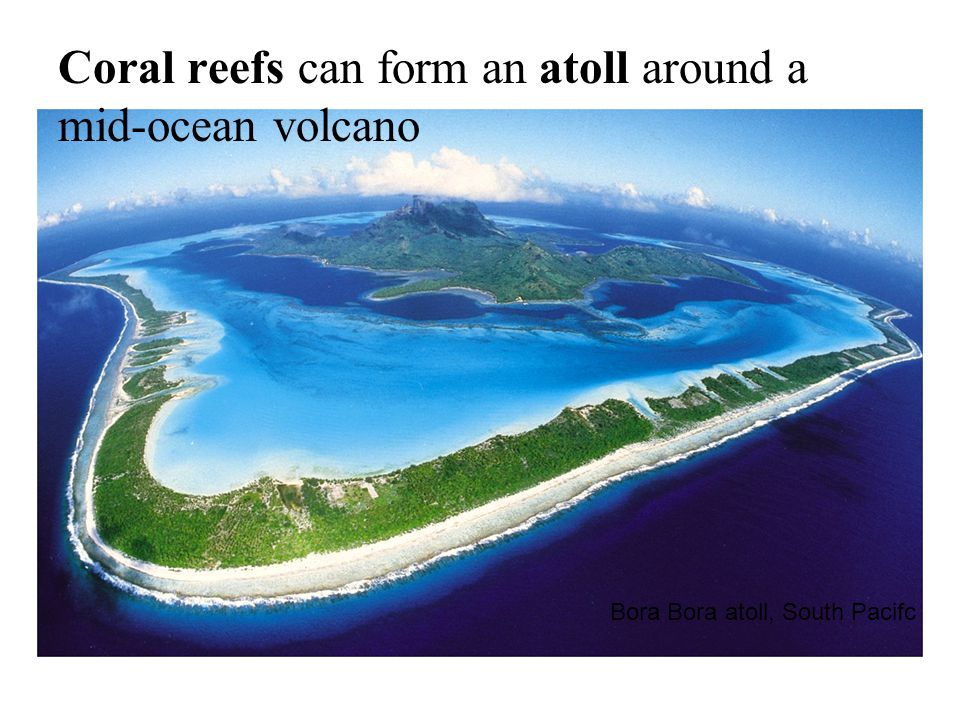 Bora Bora atoll, South Pacifc Coral reefs can form an atoll around a mid-ocean volcano