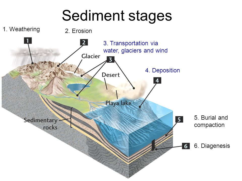 Sediment stages 1. Weathering 2. Erosion 3. Transportation via water, glaciers and wind 4.