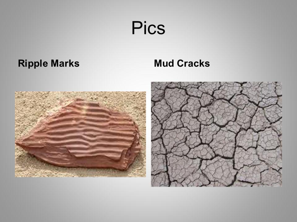 Pics Ripple MarksMud Cracks