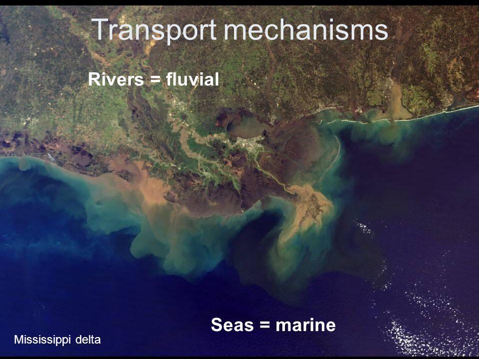 Transport mechanisms Rivers = fluvial Seas = marine Mississippi delta