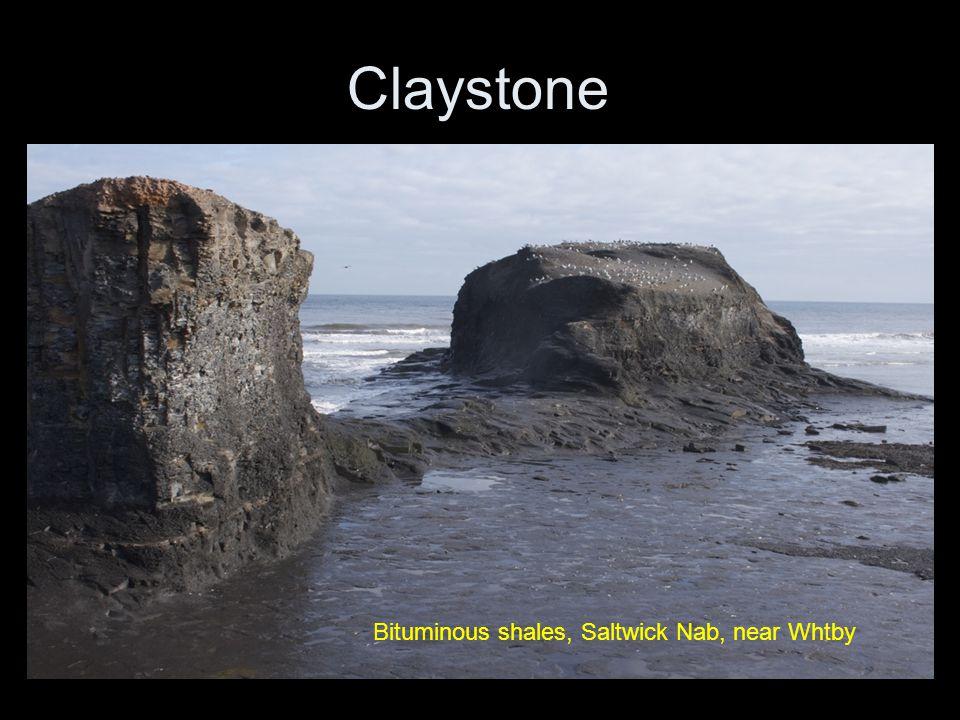 Claystone Bituminous shales, Saltwick Nab, near Whtby